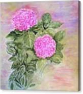 Pink Hydrangeas And Hostas Canvas Print