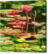 Pink Lotus Flower 2 Canvas Print