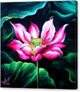 Pink Lotus From L.a. City Park Canvas Print