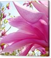 Pink Magnolia Flower Art Print Botanical Tree Baslee Troutman Canvas Print