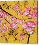 Pink Mimosa Tree Dark Yellow 201642 Canvas Print