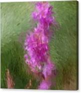 Pink Nature Abstract Canvas Print