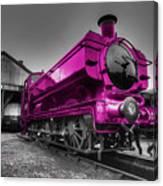 Pink Pannier  Canvas Print