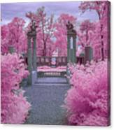 Pink Path To Paradise Canvas Print