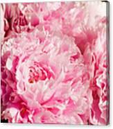 Pink Peony Bouquet Canvas Print
