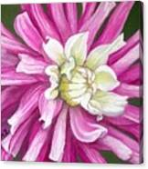 Pink Petal Blast Canvas Print