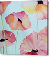 Pink Poppies Canvas Print