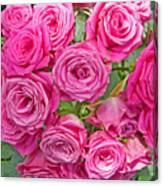 Pink Rose Bouquet Canvas Print