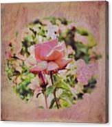 Pink Rose Doily Canvas Print