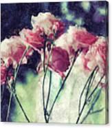 Pink Rose Flowers Canvas Print