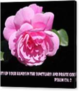Pink Rose Psalm 134 Vs 2 Canvas Print