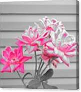 Pink Rose Tree Pop Canvas Print