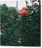 Pink Roses And The Eiffel Tower Canvas Print