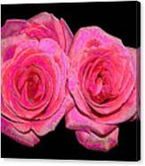 Pink Roses With Enameled Effects Canvas Print