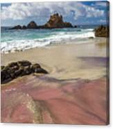 Pink Sand Beach In Big Sur Canvas Print