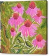 Pink Sunshine Canvas Print