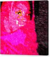 Pink Survivor Canvas Print
