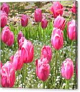 Pink Tulips By Peaceful Pond Canvas Print