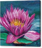 Pink Water Lily Original Painting Canvas Print