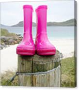 Pink Wellies Canvas Print