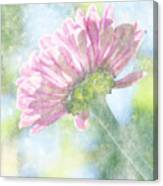 Pink Zinnia On Bokeh Background Canvas Print