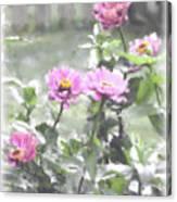 Pink Zinnias Canvas Print