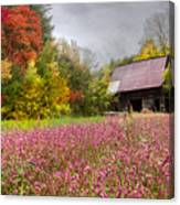 Pinks In The Pasture Canvas Print