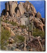 Pinnacle Peak Canvas Print