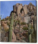 Pinnacle Peak Landscape Canvas Print
