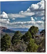 Pinon Forest At The Top Of Kolob Canyon Canvas Print