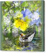 Pintail Pond Canvas Print