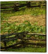 Pioneer Gardening Canvas Print