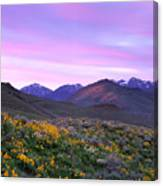 Pioneer Mountain Sunset Canvas Print