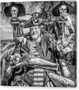 Pirate Captain And Parrots Black And White Canvas Print