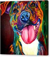 Pit Bull - Olive Canvas Print