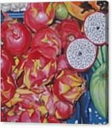 Pitahaya Canvas Print