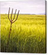 Pitch Fork In Wheat Field Canvas Print