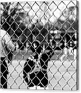 Pitchers And Catchers Canvas Print