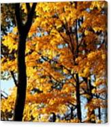 Pitchfork In Autumn Light Canvas Print