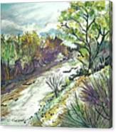 Placerita Creek 3 Canvas Print