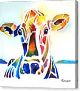 Placid The Cow Canvas Print