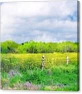 Plain Country Canvas Print