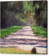 Plantation Road South Carolina Canvas Print