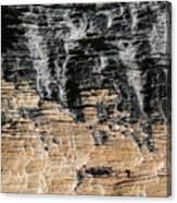 Planet Landing Canvas Print