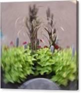 Plant Circle Canvas Print