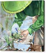 Planting The Future Canvas Print