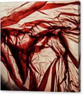 Plastic Bag 09 Canvas Print