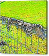 Plastic Sheeting On Fence Canvas Print