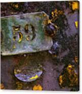 Plate 59 Canvas Print