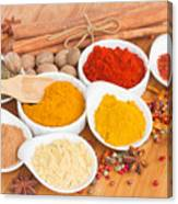 Plates Of Spices  Canvas Print